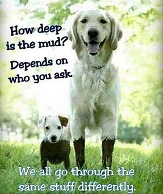 How Deep Is The Mud